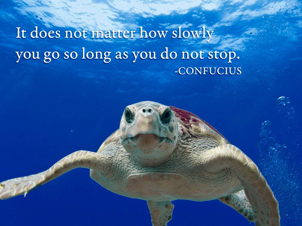 confucius quote about moving on