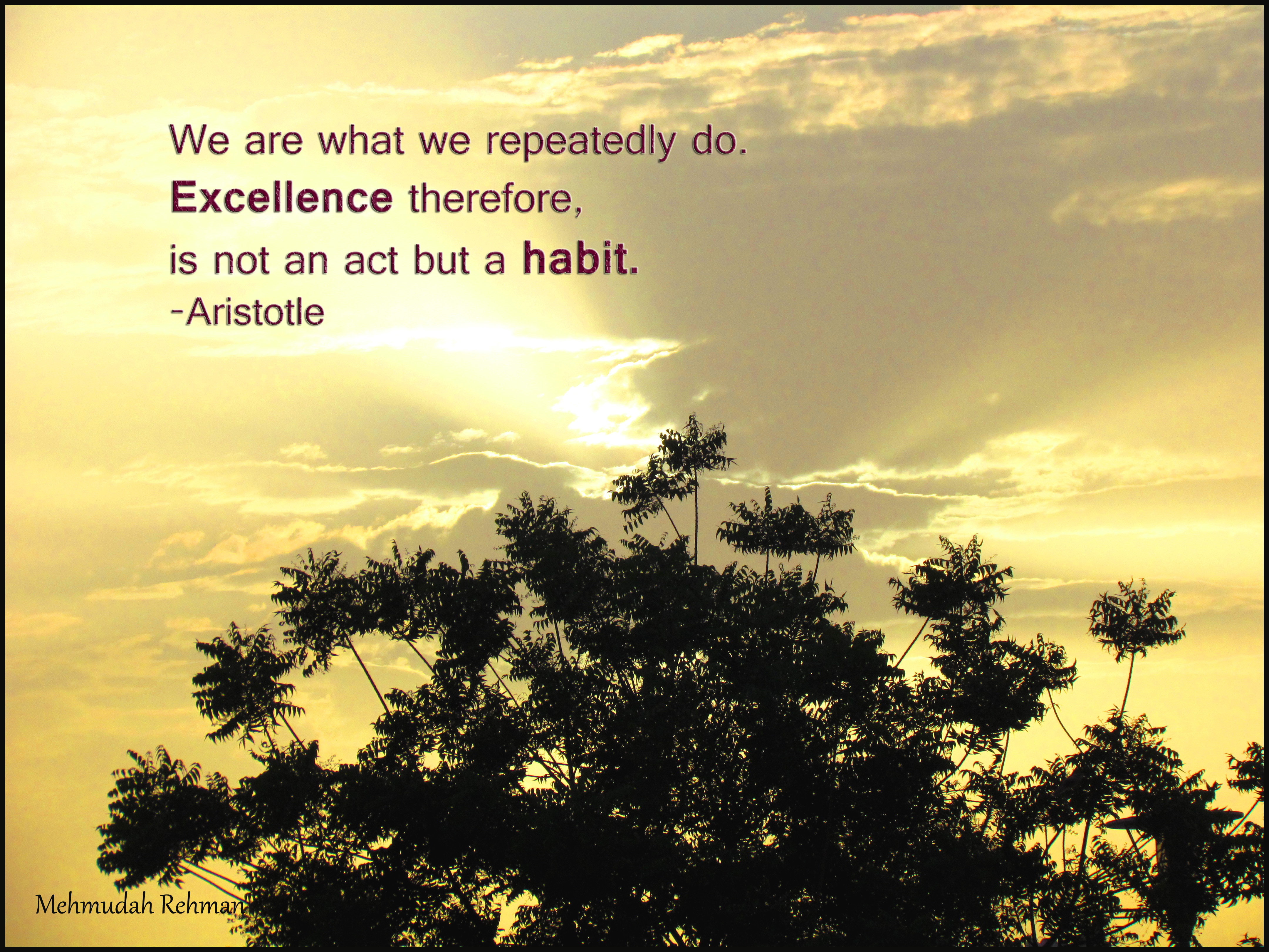 aristotle-self-esteem quotes