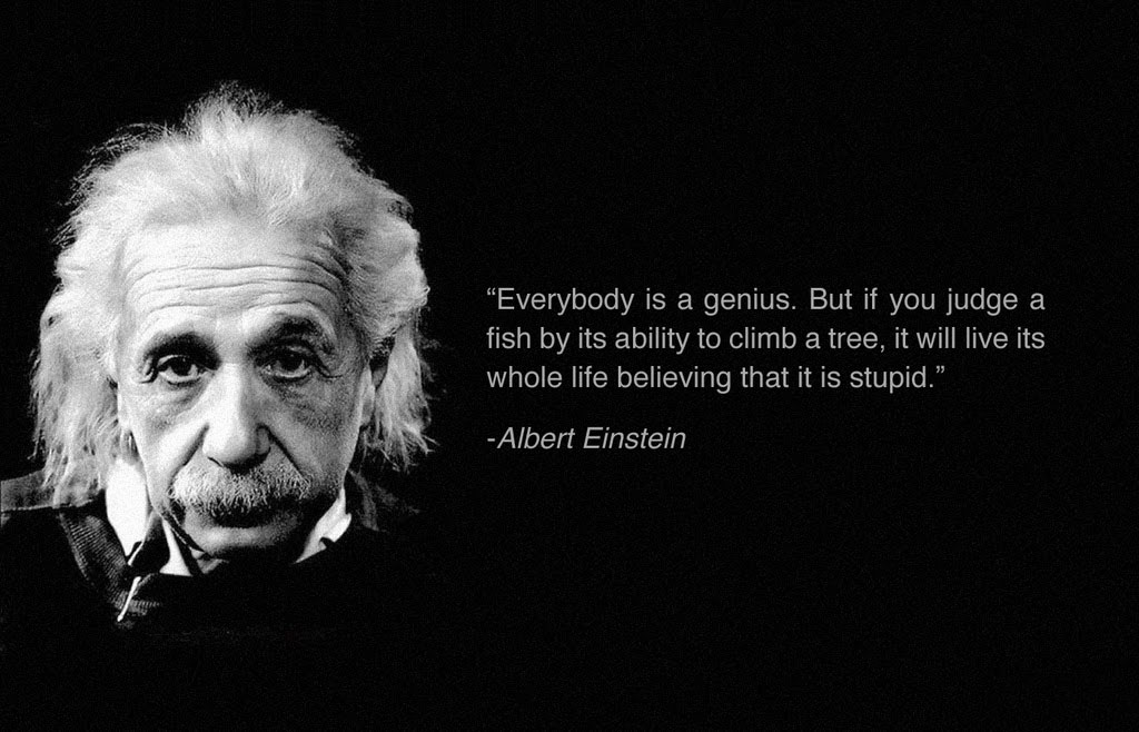 genius-quotes-albert-einstein